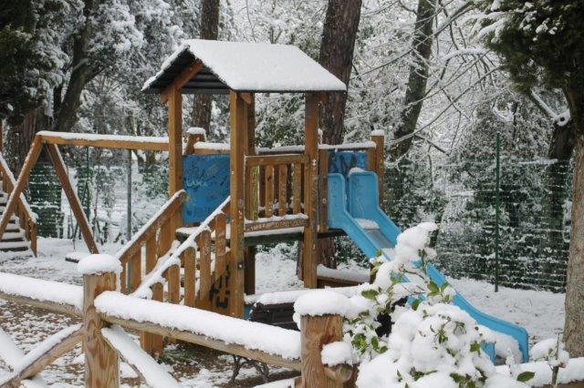 radda-e-la-neve-23-gennaio-2019-1-20190123-185332