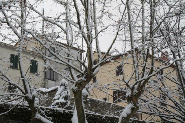 radda-e-la-neve-23-gennaio-2019-16-20190123-185419