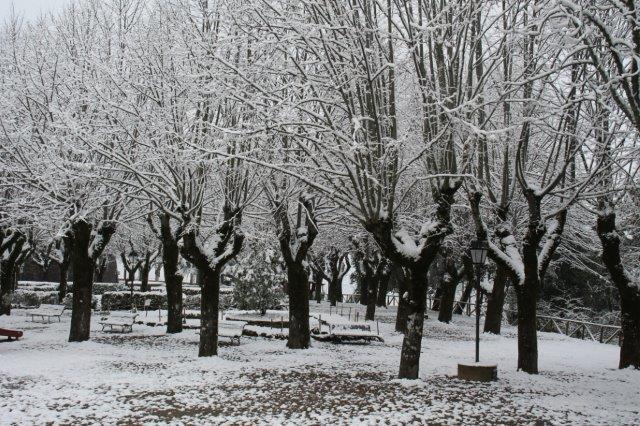 radda-e-la-neve-23-gennaio-2019-4-20190123-185341