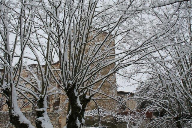 radda-e-la-neve-23-gennaio-2019-8-20190123-185353